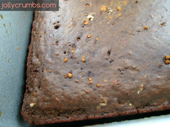 Low Calorie Chocolate Cake (with Chocolate Frosting!)   jollycrumbs.com