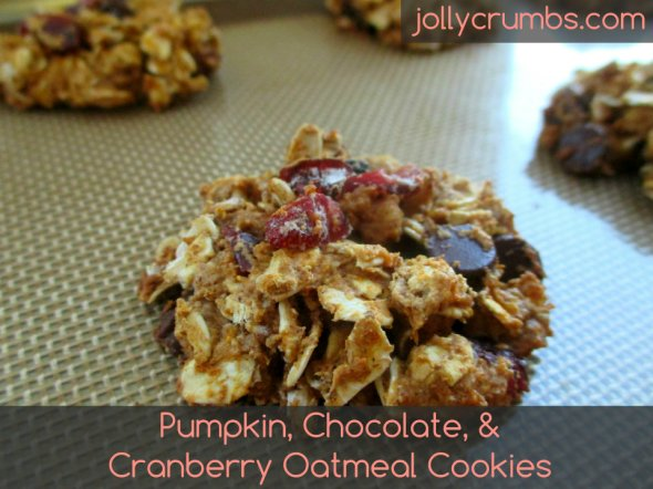 Pumpkin, Chocolate, & Cranberry Oatmeal Cookies | jollycrumbs.com