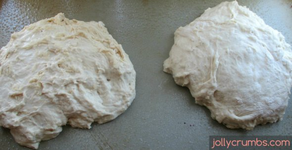 Peasant Bread (No Knead) | jollycrumbs.com
