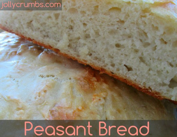 Peasant Bread (No Knead) | jollycrumbs.com