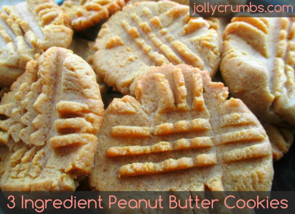 3 Ingredient Peanut Butter Cookies | jollycrumbs.com