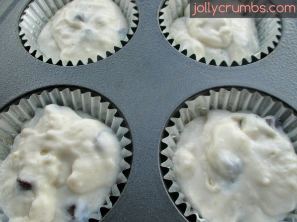 Chocolate Chip Yogurt Muffins | jollycrumbs.com